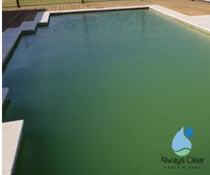 Green-Pool-1-300x251